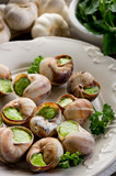 bourguignonne snail- lumache alla bourguignonne