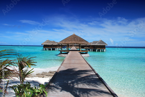 les maldives - 28654709