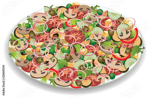 vector plate with vegetable salad