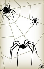 Spider two vector silhouettes background