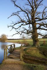 Wooden bridge in English landscape garden.