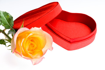 red yellow rose and a heart shape box