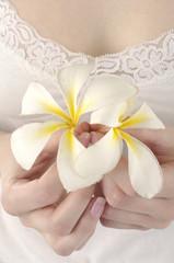 Close up Sexy woman hands holding frangipani