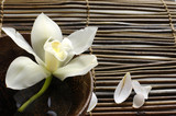 Fototapety bowl of orchid, petal on bamboo mat