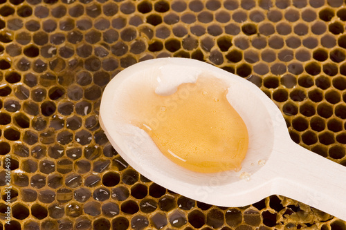 Beautiful yellow patch of  honey