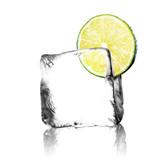 Limette im Eiswürfel