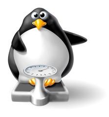 pinguino su bilancia