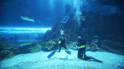 Two divers in oceanarium inside Dubai Mall