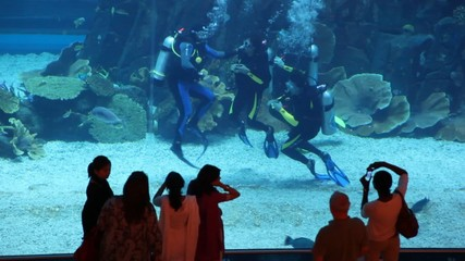Some people near aquarium with divers