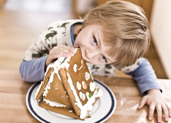 young boy with a gingerbread cookie house