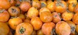 organic fuyu persimmons at the sf farmer's market