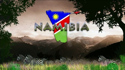 Migración en Namibia: cebras