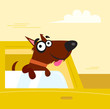roleta: Happy brown dog travel in the car. Vector Illustration.
