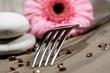 Fototapete Blume - Gerbera - Haushaltsgeräte