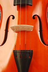Violino 003