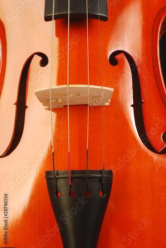 Violin 004