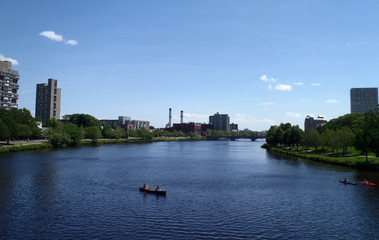 People rowing in boats on the Charles river by Harvard Universit