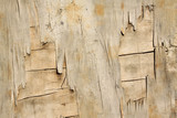 mottled plywood surface poster
