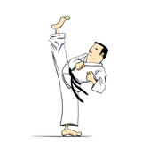 Martial arts - karate high kick