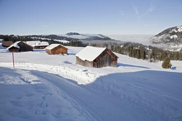 Alpe im Bregenzerwald