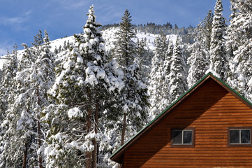 Winter Cabin with Snow Covered Trees and Mountain in Background