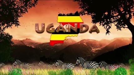 Manada de cebras en dia caluroso: Uganda