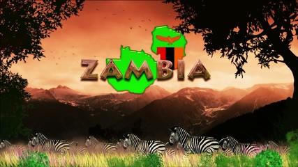 Manada de cebras en dia caluroso: Zambia