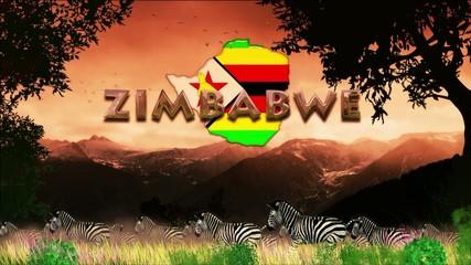 Manada de cebras en dia caluroso: Zimbabwe