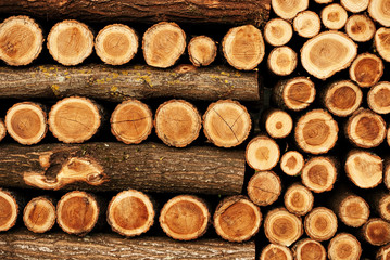 Winter fuel - beautifully ordered woodpile background