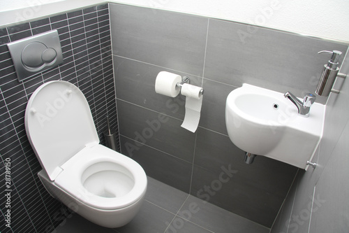 Toilet in shades of grey