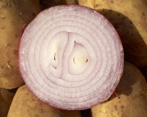Onion cut closeup at the local market
