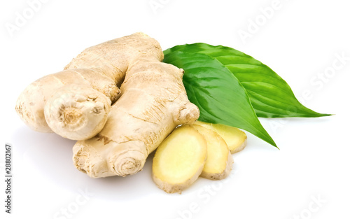 Ginger with leaves - 28802167