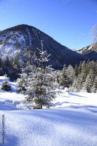 weihnachtsbaum im schnee p ster l mina compra en. Black Bedroom Furniture Sets. Home Design Ideas