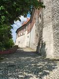 Royal Wawel Hill poster