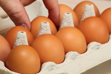 Man nehme ein Ei