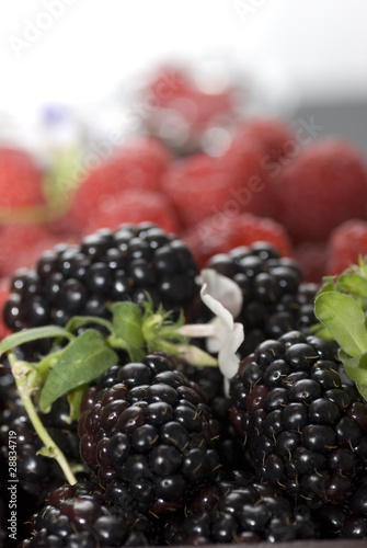 canvas print picture fruits rouges