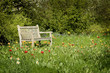 Wooden bench in flowerful garden