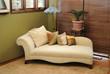 Plush Interior Lounge Chair