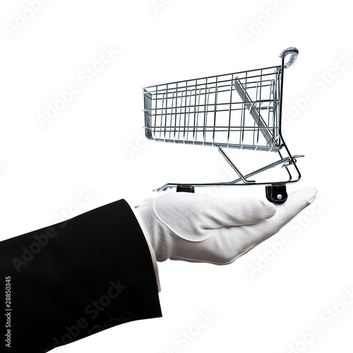 Shopping cart in hand