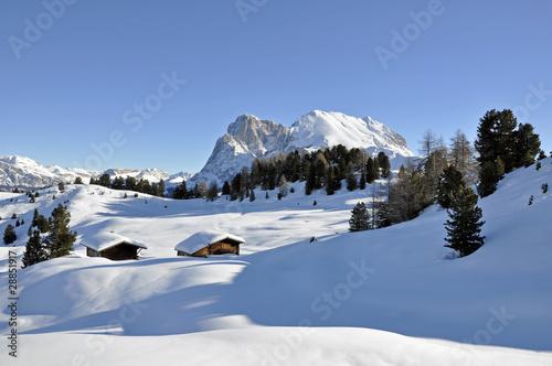 Leinwandbilder,alm,berg,blockhaus,blockhütte