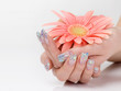 Cupped hands with manicure holding pink flower