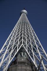 東京スカイツリーを見上げる