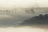 Fototapety misty landscape