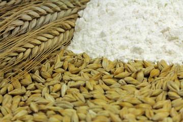 getreide mit mehl