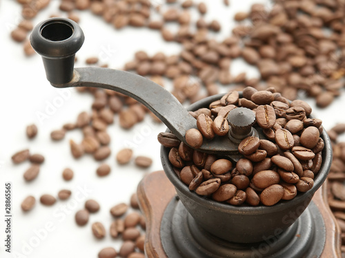 Coffee Grinder in close-up view.