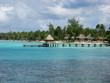 ponton,bridge,brucke,ocean,palmier,mer