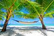 Fototapeten,malediven,meer,hängematte,stranden