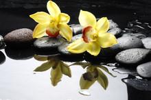 nature morte avec orchidée orange de gouttes d'eau