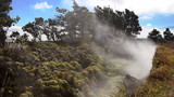 Volcanic Steam Vents