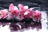 Zen stone and pink orchid with water drops - 28903356